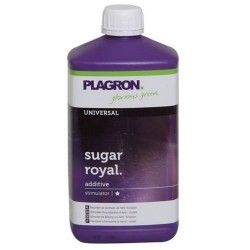 Sugar Royal Plagron - 1L
