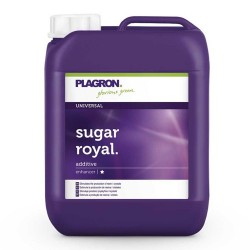 Sugar Royal Plagron - 5L