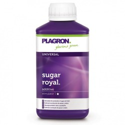 Sugar Royal Plagron - 250ml