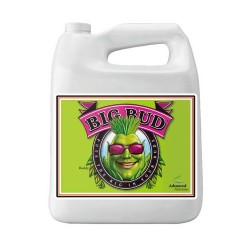 Big Bud Advanced Nutrients - 10L