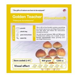 GrowKit Golden Teacher - 1200cc
