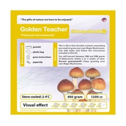 GrowKit Golden Teacher - 2100cc